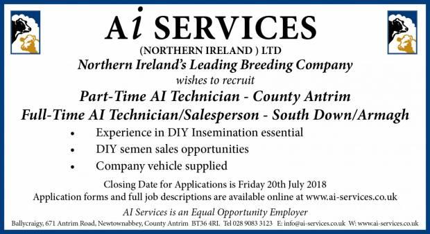 Job Vacancies - AI Technicians
