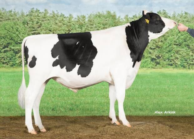 Double-W Ranger features in Holstein International Magazine